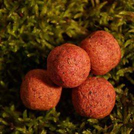 02012 PopUp Erdberry